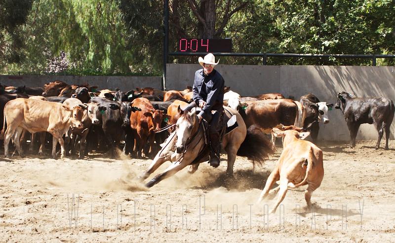 Eric and Bucky - Cutting Horse - California