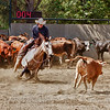Temecula Cutting Horse Show - California
