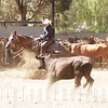 Eric and Bucky - Temecula Cutting Horse Show, NCHA