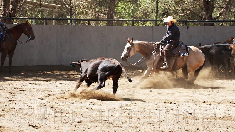 Eric and Bucky - Cutting Horse Show California