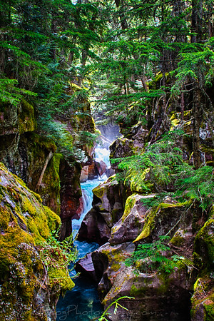 Avalanche Creek Gorge Glacier National Park,Montana