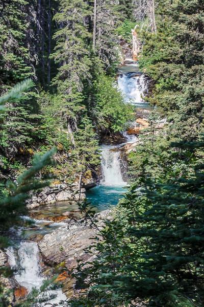 Rose Creek Hike