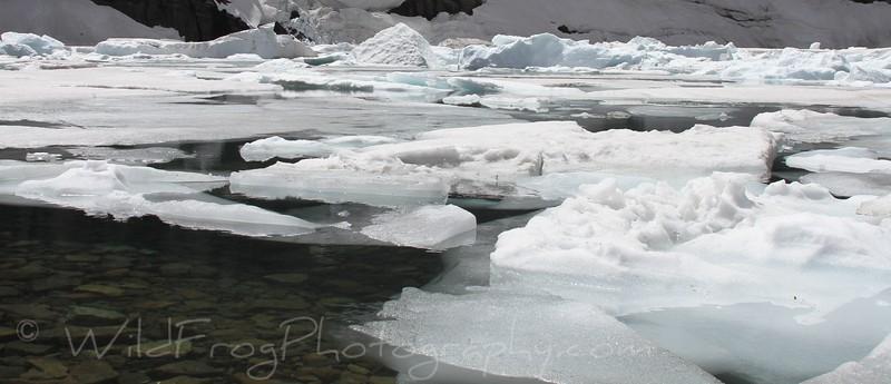 Iceberg Lake,Many Glacier