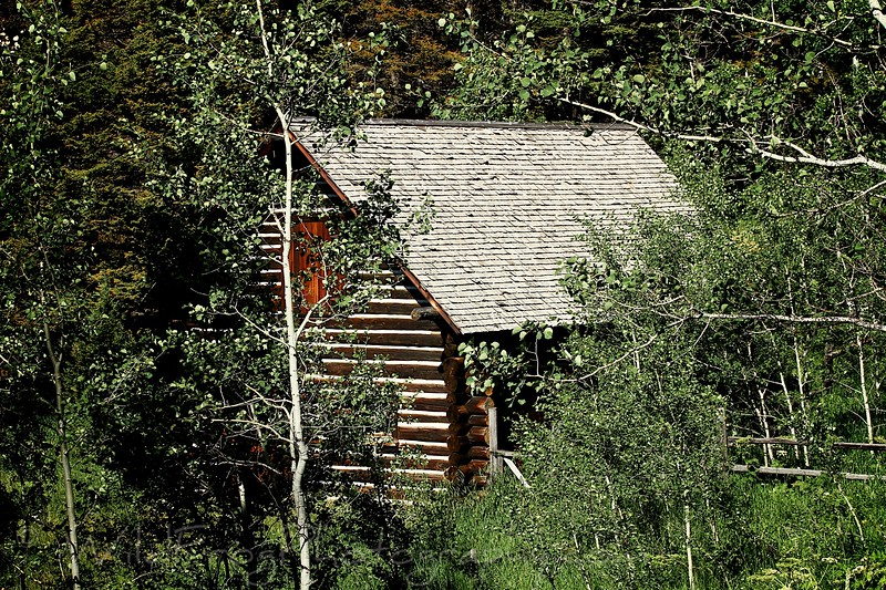 Log Cabin,East Glacier