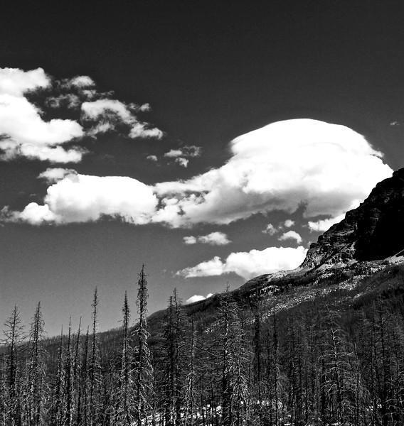 Red Eagle Lake trail,East Glacier,Montana