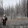 After the Fire,east glacier national park
