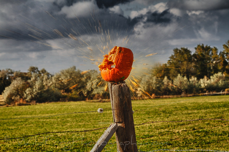 Halloween - the end