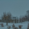 Cattle Yards in the Winter Time - Idaho