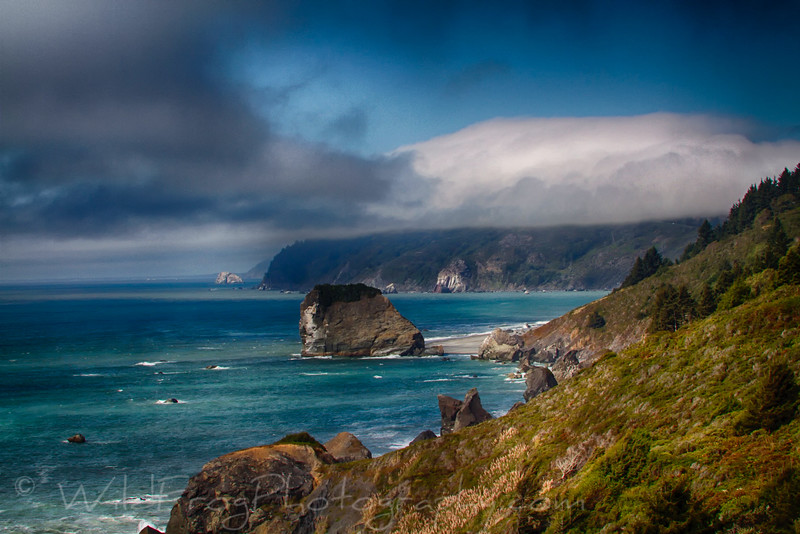 North Coast of California in the Redwood National park