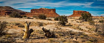 Dead Horse Point,Moab