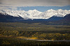 Snowy peaks and fall colors of Denali National Park as seen from Little Coal Creek Trail, Denali State Park, Alaska, USA.