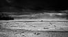 Sand storm, Alaska Highway, Fairbanks area, Alaska, USA.
