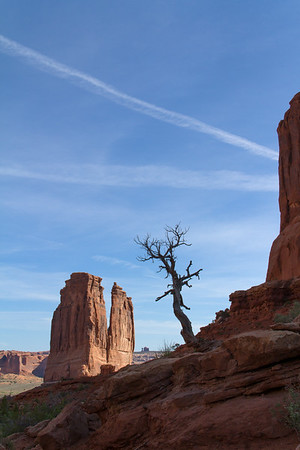 """Rock feature in the distance is """"The Organ."""""""