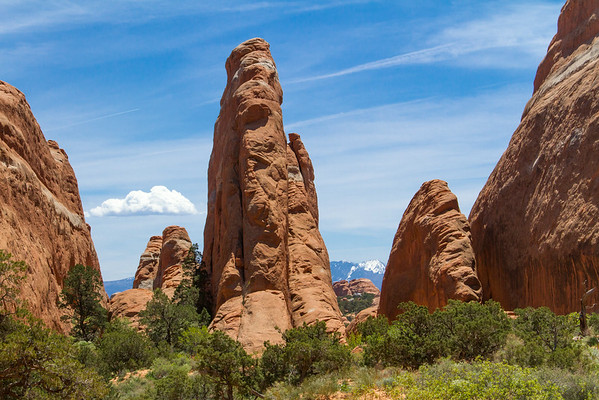 """Sandstone """"fins"""" in Devil's Garden area of Arches National Park.  La Sal Mountains in the background."""
