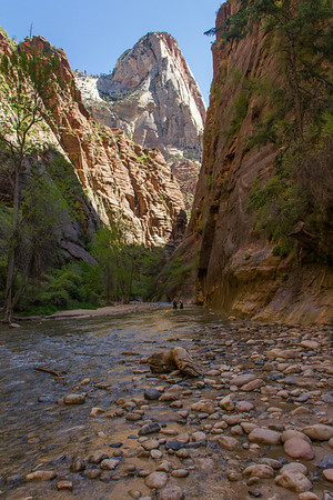 Looking upriver at the Virgin River canyon.  Further upriver the canyon narrows significantly.