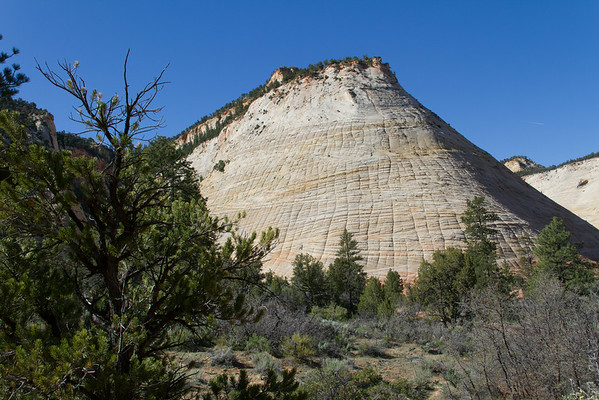 Checkerboard Mesa.  Notice the cross-bedding of the layers going different directions.  The horizontal lines are layers deposited due to changes in wind direction over millennia.  The vertical lines are the result of weathering and erosion.