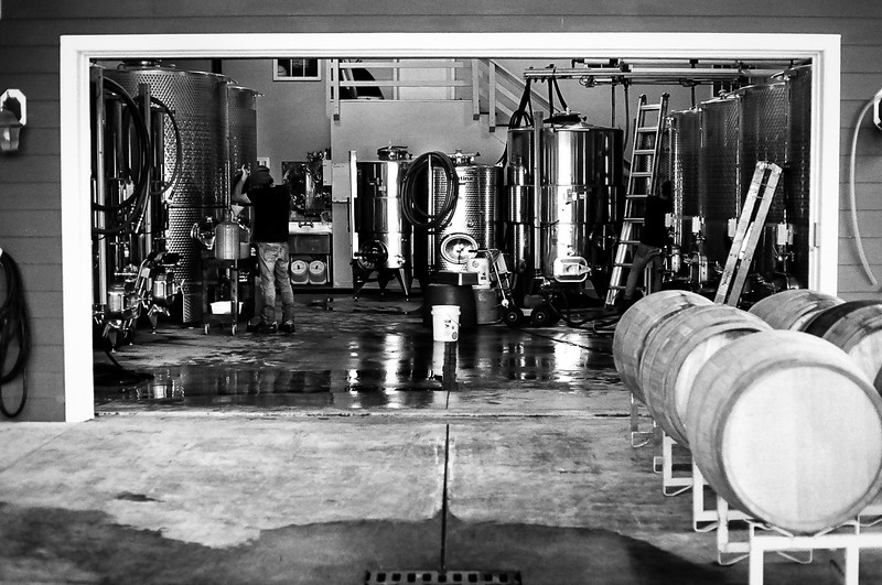 One of the fermentation rooms at Sunset Hills Vineyard, Virginia. Kodak Tri-X,  2014.