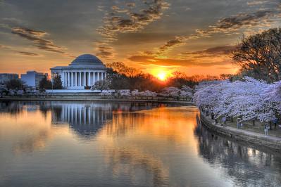 Cherry Blossom Sunrise-Washington, DC