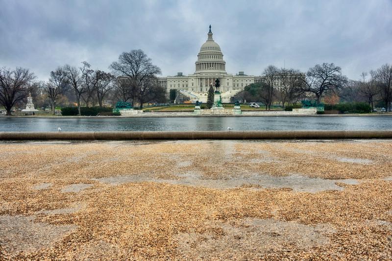 Washington DC in the Rain