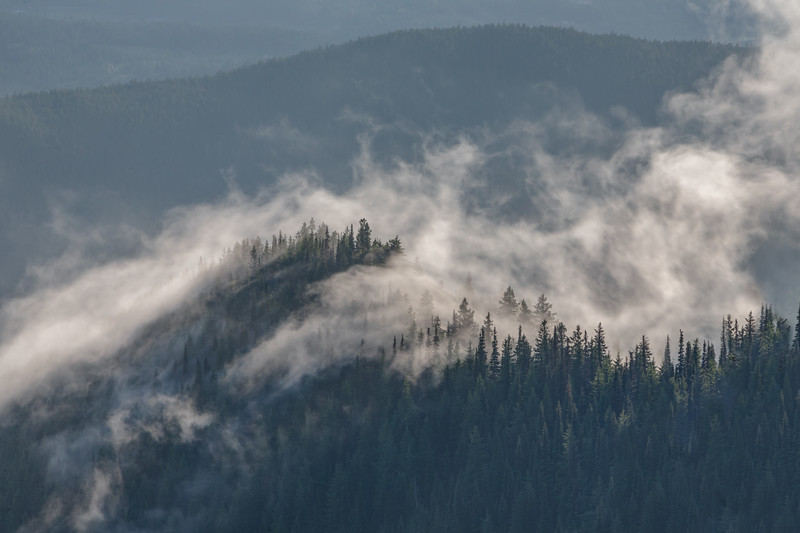 Foothills to Blue Mountain, Olympic National Park