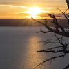 Lake Butte Overlook Sunset with Tree
