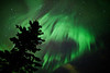 Aurora borealis, Midnight Dome, Dawson City area, Yukon, Canada.