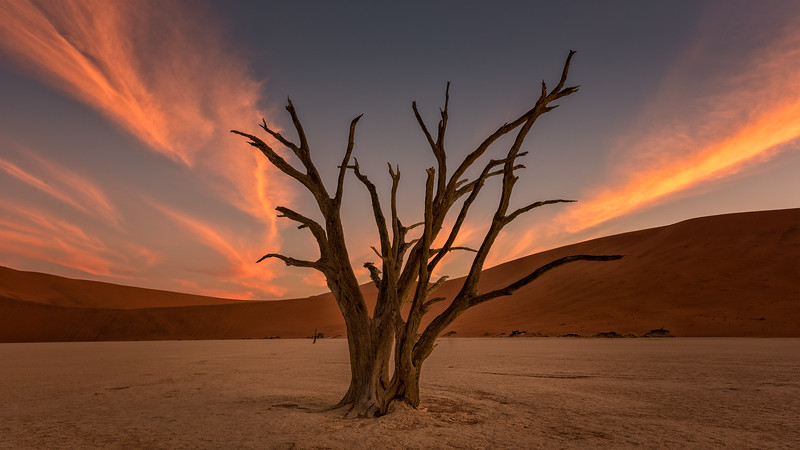 Deadvlei After Sunset
