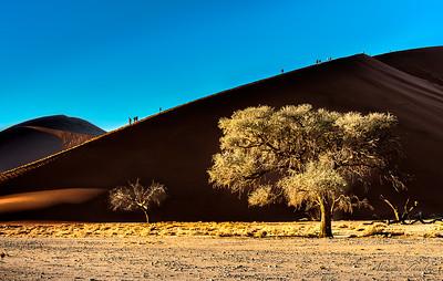 In the Dunes