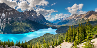 Lake Peyto Valley