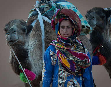 Berberian Herdsman
