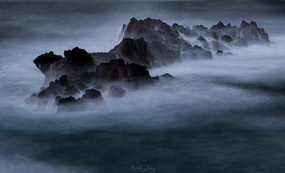 Dreams of the Ocean