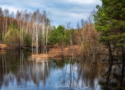 River Gus Landscape