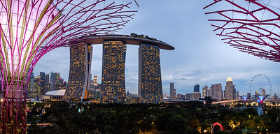 Singapore cityscape from the top of a supertree