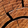 Cut log abstract