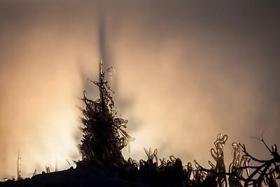 "ABSTRACT 9033  ""Sea Smoke Sunrise"""
