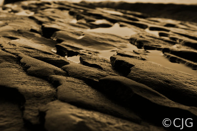 Water & Rocks (Sepia)