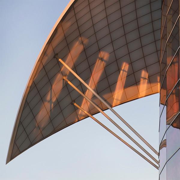 Sail at Dawn