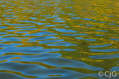 Smooth water ripples.