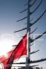 Maltese Falcon mast