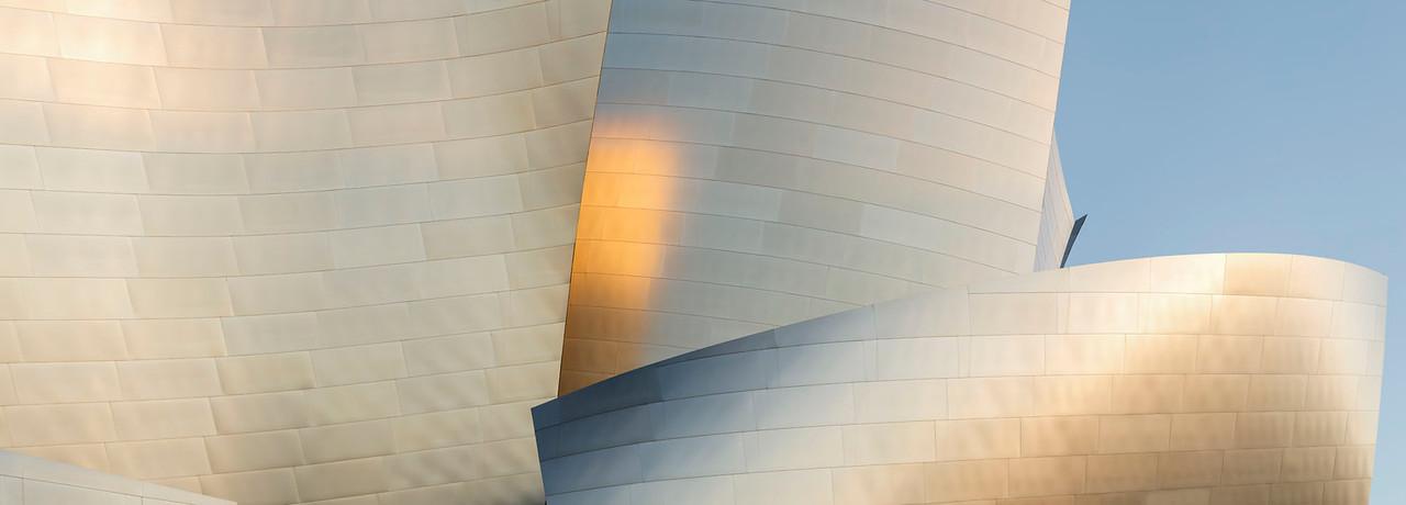 Disney Concert Hall #2 2015