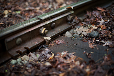 17/52 - Spent a little time taking pictures down at the railroad tracks. I think this one turned out to be the best of the bunch.