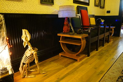This bony little canid was obviously trying to mimic the elephant lamp on the table next to Jack's Triple 78 chair.