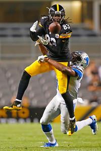 APTOPIX Lions Steelers Football