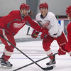 Red Wings Camp