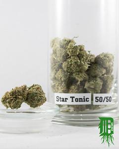 Star Tonic 1