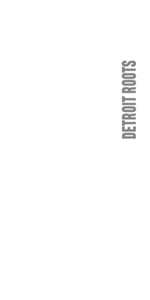 D-ROOTS logo