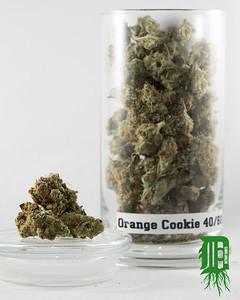 Orange Cookie 1