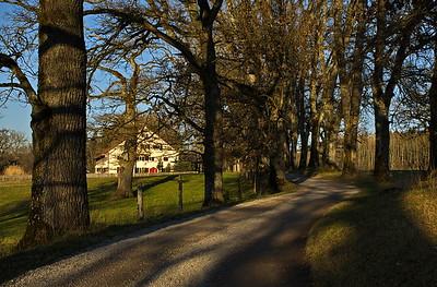 Ettenhofener Straße