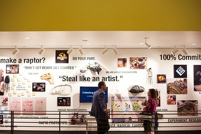 Enron Raptor Exhibition