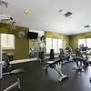 Clubhouse Gym